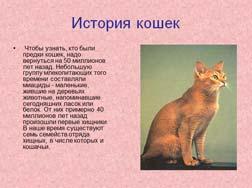 Классный час История домашней кошки