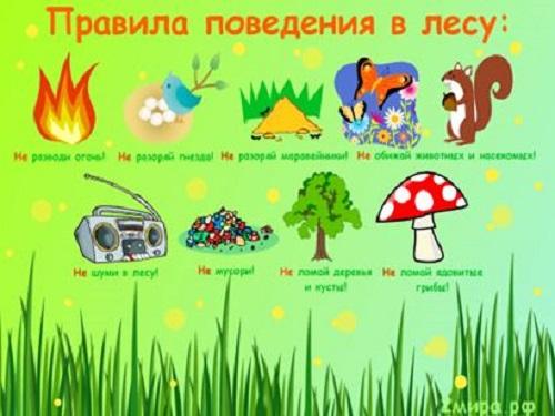 Картинки знаки больше и меньше в картинках для детей