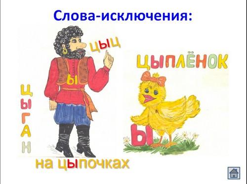 video-anal-novinki