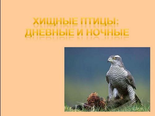 Птицы  Википедия