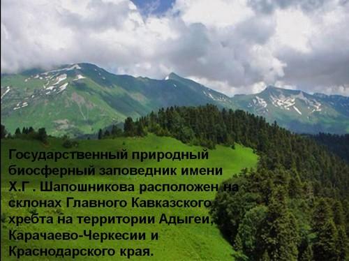 кавказский биосферный заповедник презентация