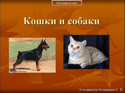 Презентация часы 2 класс про кошек и собак презентация тема