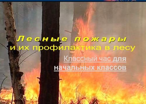 классный час лесные пожары