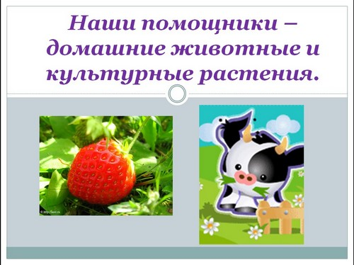 Презентацию по теме домашние животные 1 класс