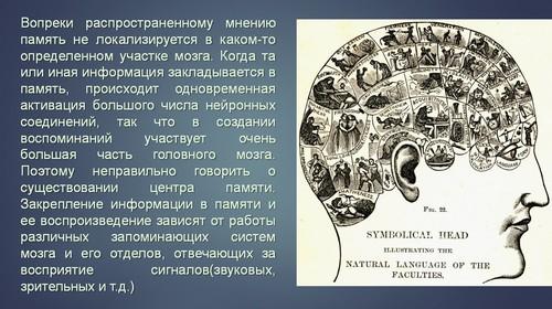 презентация на тему память человека