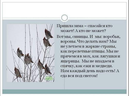 Стругацкие книги малыш читать онлайн
