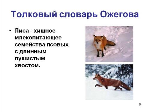 слово и предложение 1 класс презентация