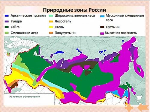 География презентация на тему природные зоны мира