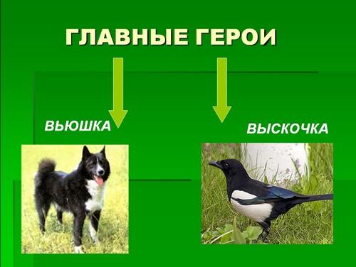 Астафьев Стрижонок Скрип Презентация