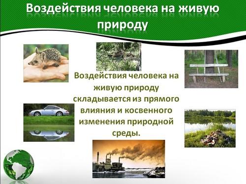 Приведите примеры отрицательного воздействия человека на природу